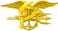 Navy SEAL insignia. Image courtesy of US Navy.